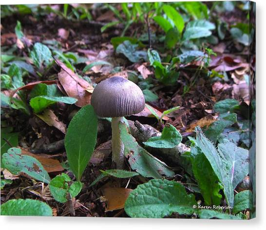 Purple Umbrella Mushroom Canvas Print by Karen Roberson