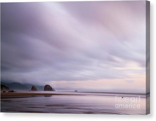 Purple Wisp In The Morning Canvas Print