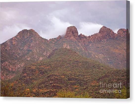 Pusch Ridge Tucson Arizona Canvas Print