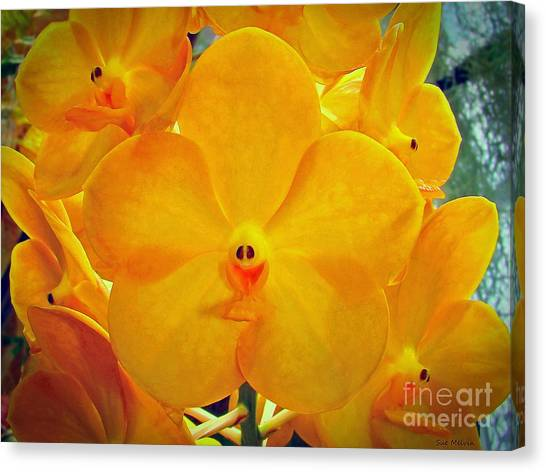 Put On A Happy Face Yellow Orchids Canvas Print