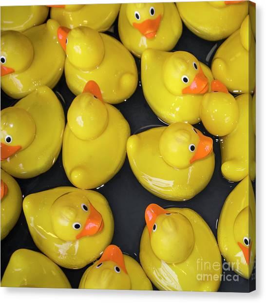 Rubber Duck Canvas Prints (Page #3 of 11) | Fine Art America