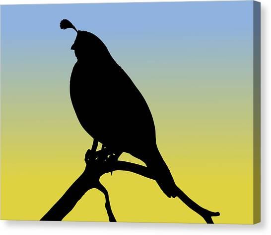 Quail Silhouette At Sunrise Canvas Print