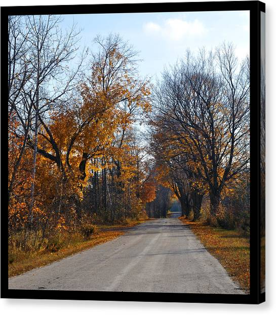 Quarterline Road Canvas Print