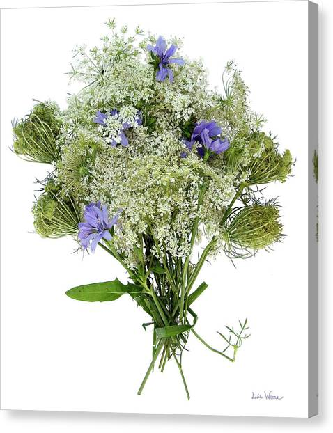 Queen Anne's Lace With Purple Flowers Canvas Print