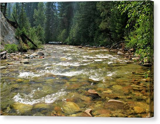 Boise National Forest Canvas Print - Queens River by Ed  Riche