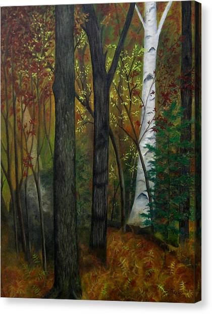 Quiet Autumn Woods Canvas Print