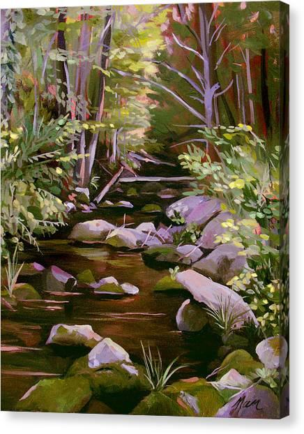 Quiet Brook Canvas Print