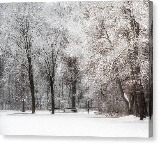 Quiet Winter  Canvas Print