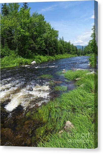 Quill Pond Brook Near Rangeley Maine  -70748 Canvas Print