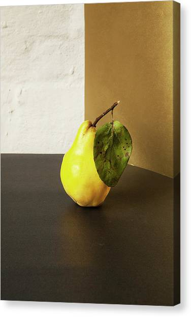 Pear Canvas Print - Quince by Happy Home Artistry