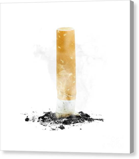 Ashes Canvas Print - Quit Smoking With Stubbed Out Cigarette On White by Jorgo Photography - Wall Art Gallery