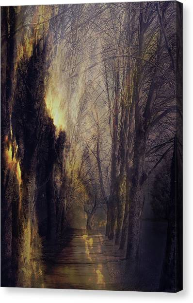 Susann Serfezi Canvas Print - Quo Vadis  -  Memory Lane by AugenWerk Susann Serfezi