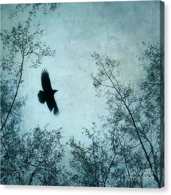 Blackbirds Canvas Print - Spread Your Wings by Priska Wettstein