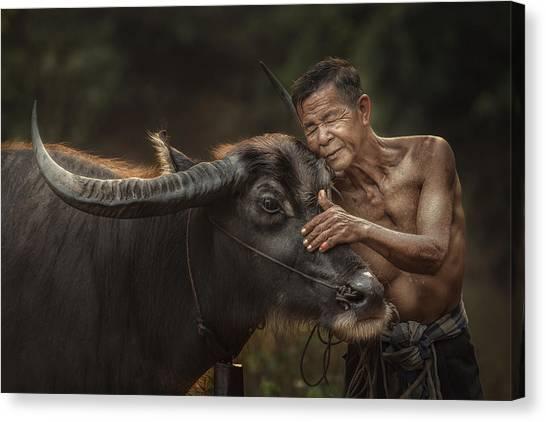 Farmers Canvas Print - R U Ready For Work? by Jakkree Thampitakkull