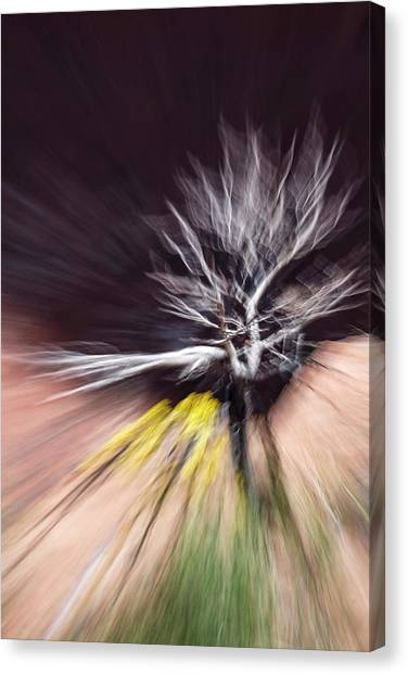 Rabbit Brush Bones Twist Canvas Print