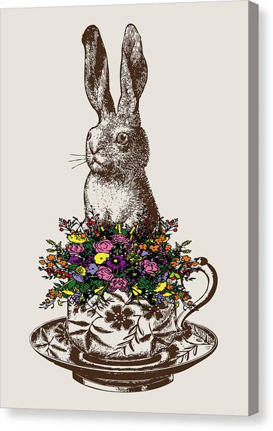 Spring Canvas Print - Rabbit In A Teacup by Eclectic at HeART