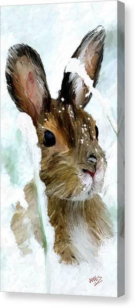 Rabbit In Snow Canvas Print