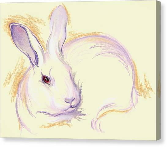 Rabbit With A Red Eye Canvas Print