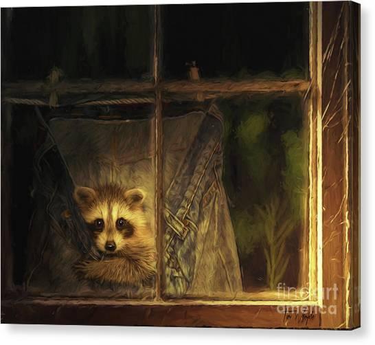 Raccoon Pants Canvas Print by Tim Wemple