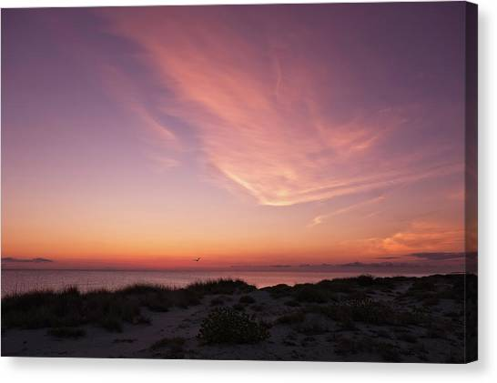 Southwest Florida Sunset Canvas Print - Radiant Painting Of The Sky At Sunset  -  Venbchsunset135136 by Frank J Benz