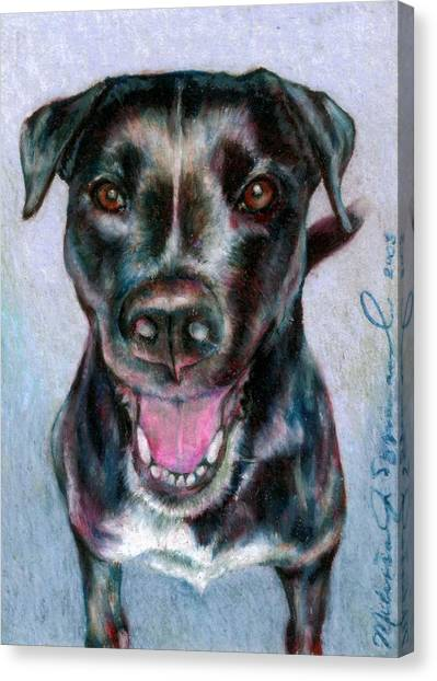 Radiant Radley Canvas Print by Melissa J Szymanski