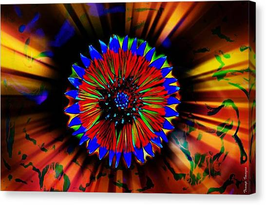 Radiate  Canvas Print