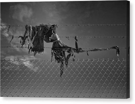 Ragged On A Fence Canvas Print