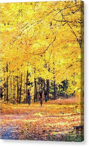 Autumn Glory On The Rail Trail Canvas Print