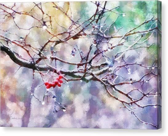 Rain Berries Canvas Print