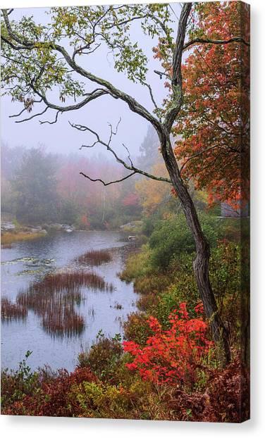 Maine Canvas Print - Rain by Chad Dutson