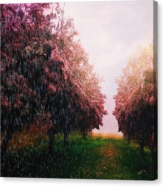 Rain On Imagination Canvas Print