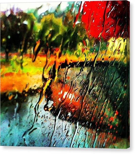 Wet Canvas Print - #rain #raindrops #wet #fall #leafs by Nate Greenberg