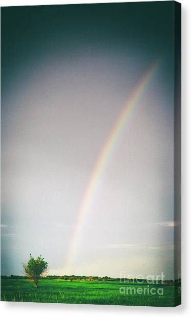 Rainbow #0157 Canvas Print