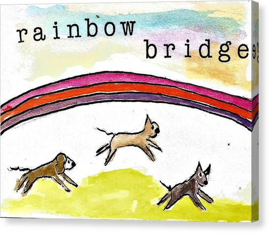 Image result for rainbow bridge boxer