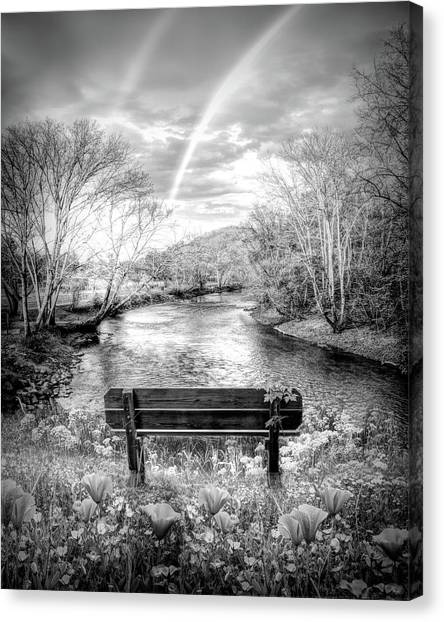 Poppys Canvas Print - Rainbow Dreams In Painterly Black And White by Debra and Dave Vanderlaan
