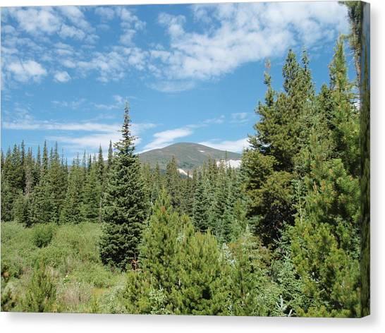 University Of Colorado Canvas Print - Rainbow Lakes Campsite by Dennis Boyd
