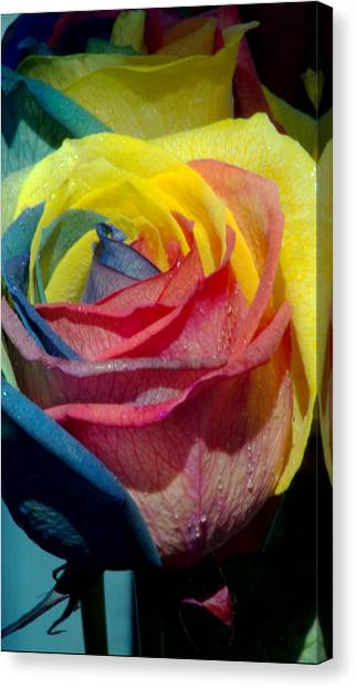Rainbow Of Love 2 Canvas Print