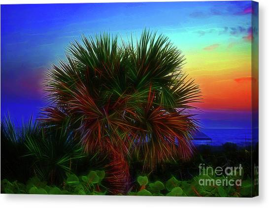Canvas Print featuring the photograph Rainbow Palm by Patti Whitten