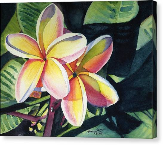 Flower Canvas Print - Rainbow Plumeria by Marionette Taboniar