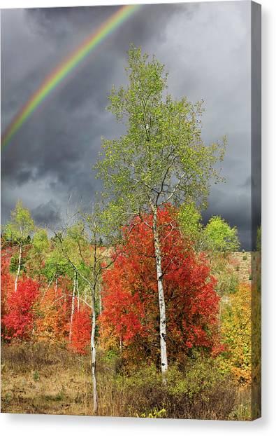 Bishop Hill Canvas Print - Rainbow Ridge by Kathleen Bishop