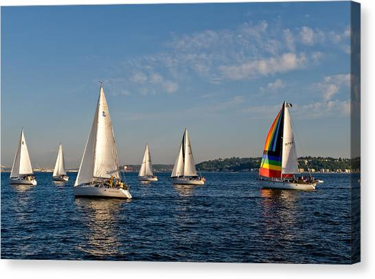 Rainbow Sails Canvas Print by Tom Dowd