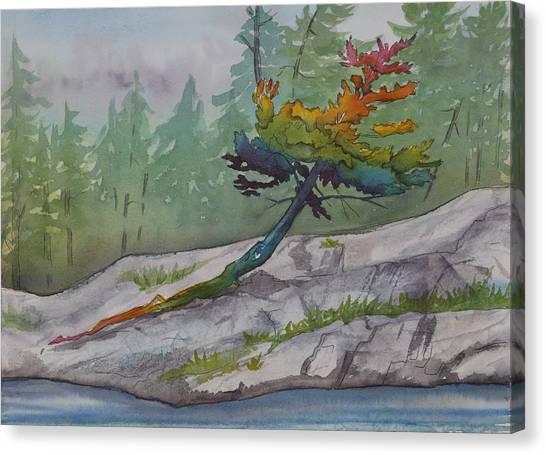 Rainbow Tree  Canvas Print by Debbie Homewood