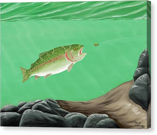 Rainbow Trout - Enticed From The Pool Canvas Print by Ralph Martens