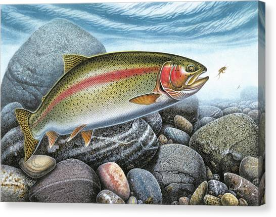 Fly Fishing Canvas Print - Rainbow Trout Stream by Jon Q Wright