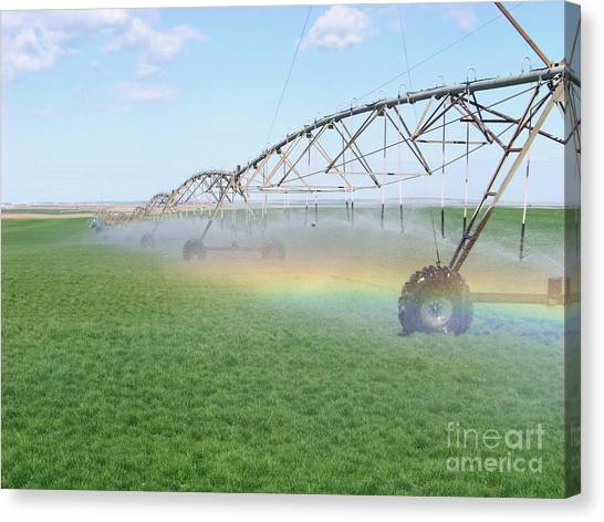 Rainbow Under The Pivot Canvas Print
