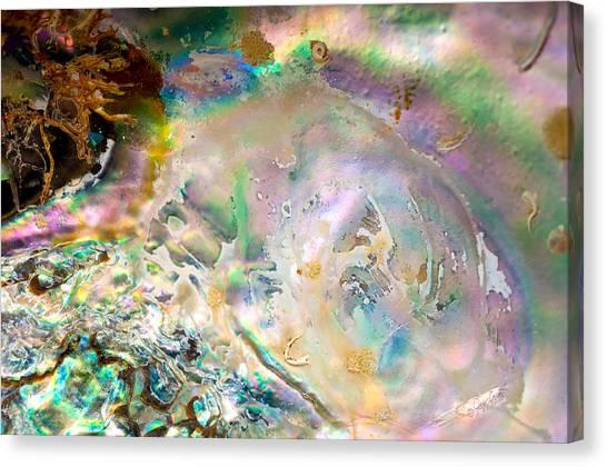 Rainbows And Seaweed Canvas Print by Joy Gerow