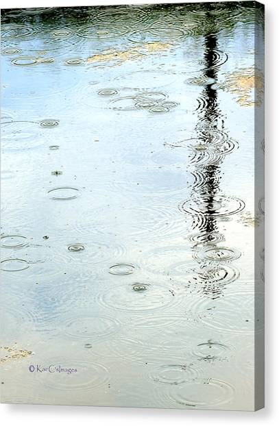 Raindrop Abstract Canvas Print
