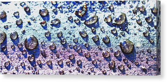 Raindrop Shingle Canvas Print