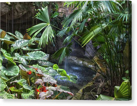 Rainforest Canvas Print