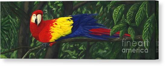 Rainforest Parrot Canvas Print